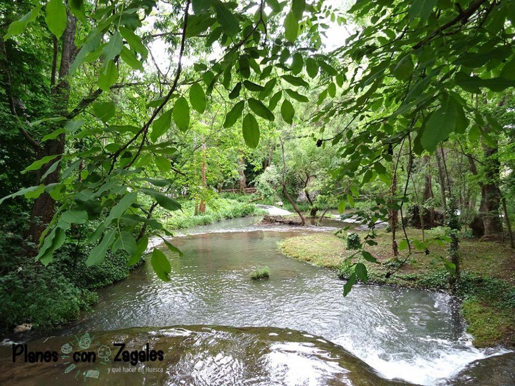 Monasterio Piedra vegetacion
